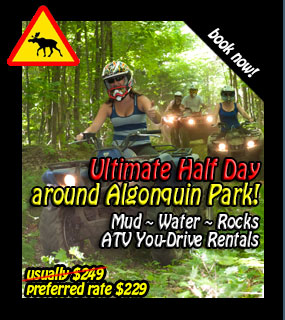 ultimate atv adventure, Back Country Tours ATV Snowmobile jet skispecialists in Ontario